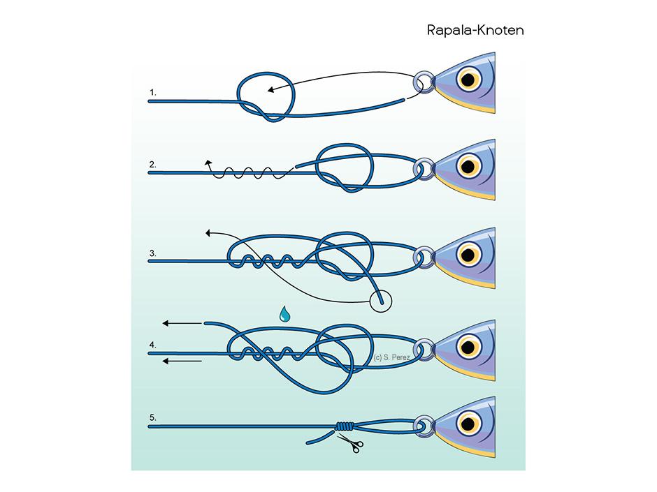 Rapala-Knoten