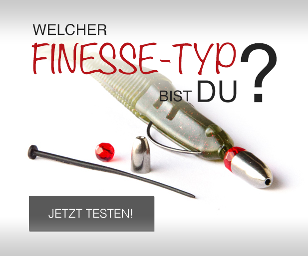 Finesse-Typ-Test.png