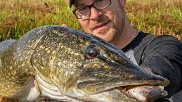 Angeln-auf-Hecht-mit-Köderfisch